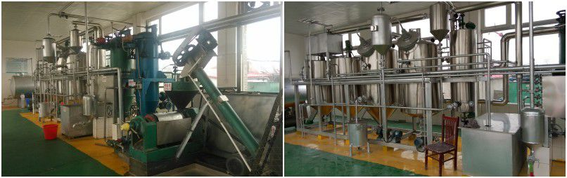 small scale edible oil refining plant for palm kernel oil, pumpkin seed oil and peanut oil
