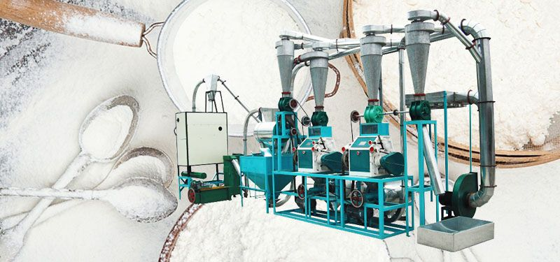 small flour milling business plan and equipment