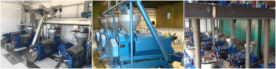 small scale mustard oil mill projects