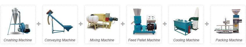 poultry and cattle feed pellet plant for small scale production line