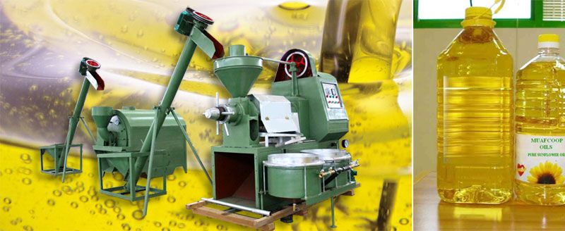 small rapeseed oil press plant