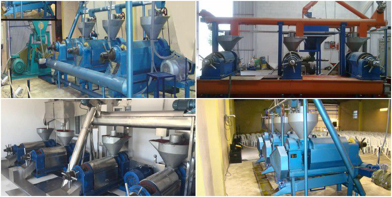 small scale cooking oil mill project - cottonseed oil pressing unit