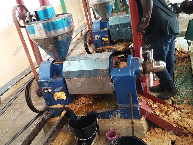 small scale vegetable oil production plant