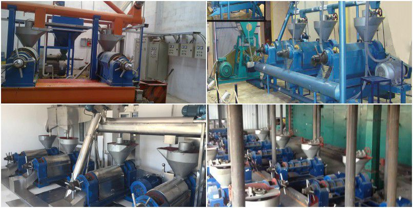 How to Choose the Cotton seed Oil Expeller Manufacturer? Price & Cost
