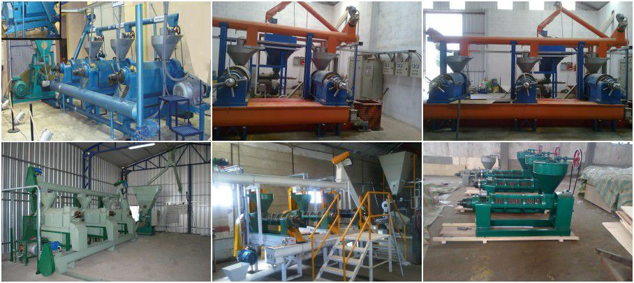 small soybean oil manufacturing plant