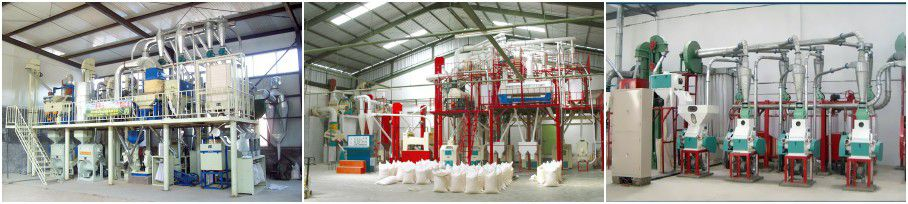 small wheat flour milling projects