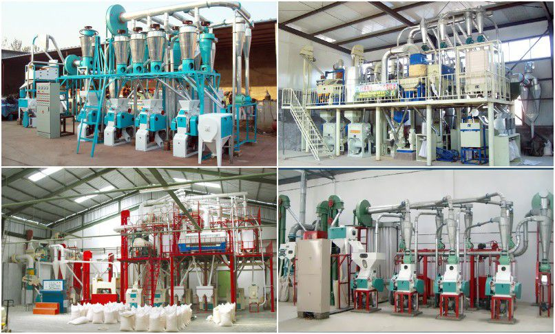 small scale wheat flour processing plant for mini flour mill company
