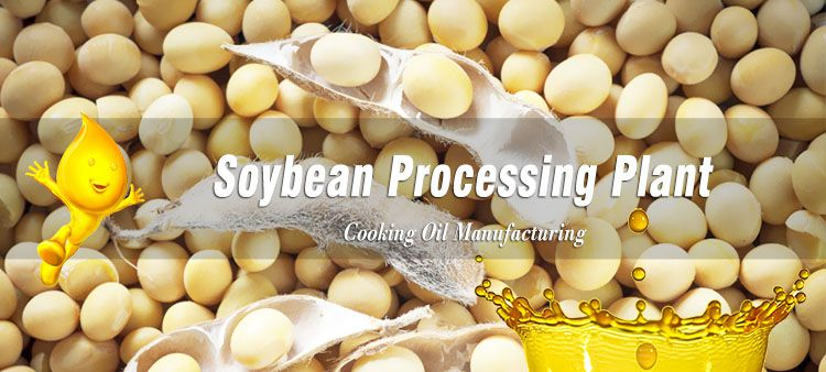 start soybean processing business