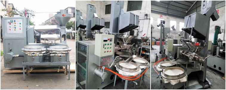 sunflower oil press with filter for small oil producing plant