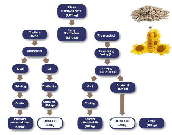 sunflower oil pressing process