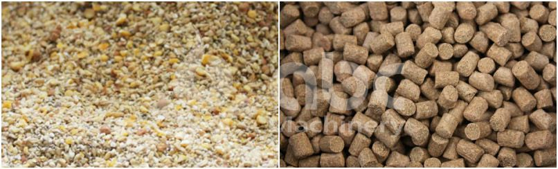 traditional feed vs pellet feed