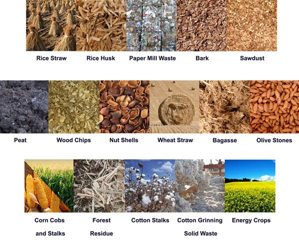 types of biomass for pellet production