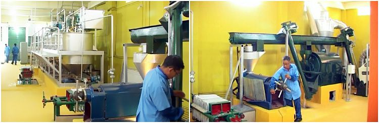vegetable seed oil mill plant in India