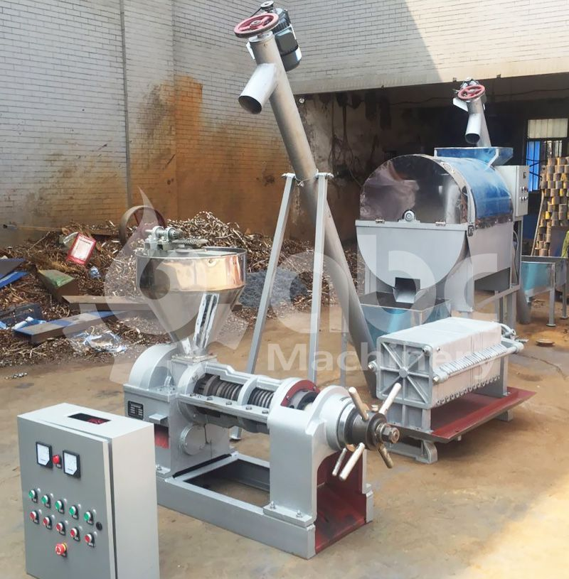 low cost vegetable seed oil production line for sale