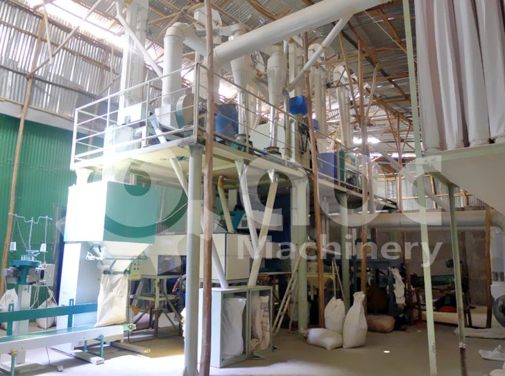 wheat seeds processing line project - Low Cost Equipment Unit