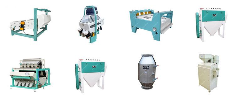 wheat seed processing machine for sale - establish small flour mill