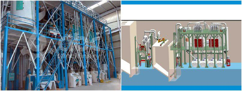wheat seed processing plant for small flour mill