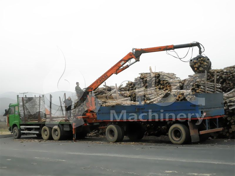 wood logs to be processed in the wood pellets plant