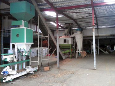 1TPH Wood Pellet Production Equipment in UK