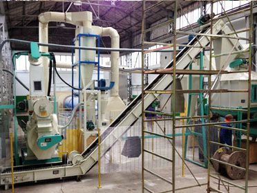 1 TPH Wood Pelleting Plant Set Up in Italy