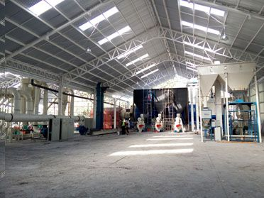 Pine and Eucalyptus Wood Pelletizing Line in Chile