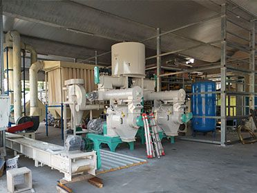 2~3TPH Wood Pelletizing Plant Built in Italy